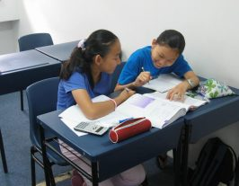 Chinese Tuition